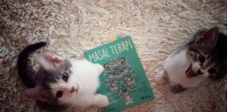 Okunan ve Yaşanan Bir Kitap Masal Terapi